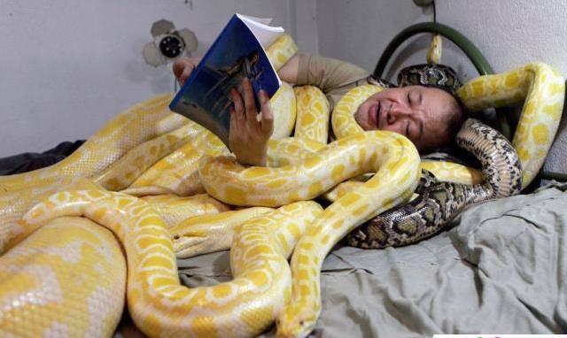 Tidur sama ular