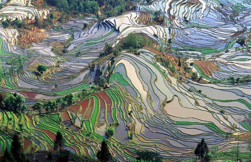 Yuanyang, China