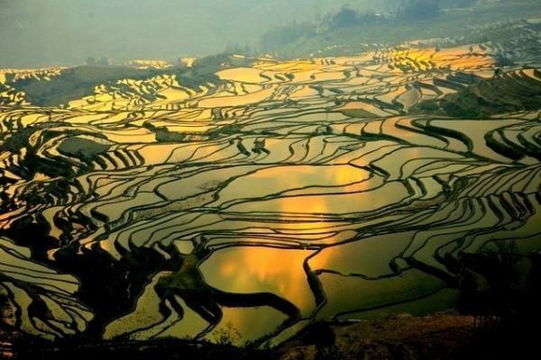 daerah pertanian Yuanyang