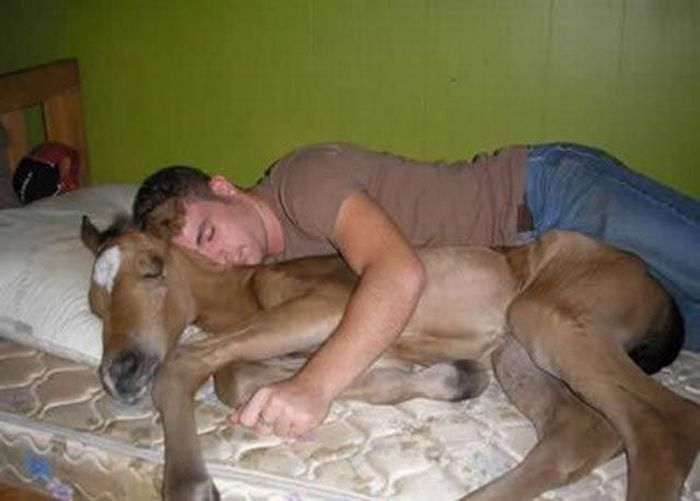 Tidur sama keledai