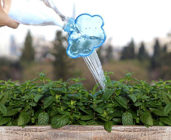 Menyiram tanaman