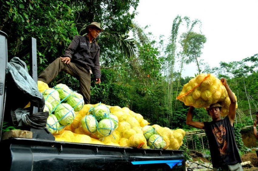 Dukung petani lokal