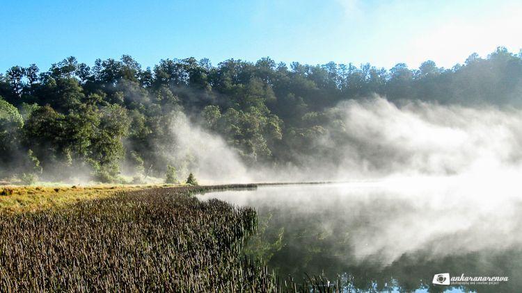 Danau Taman Hidup di Argopuro