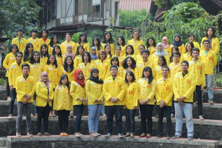We are The Yellow Jacket!