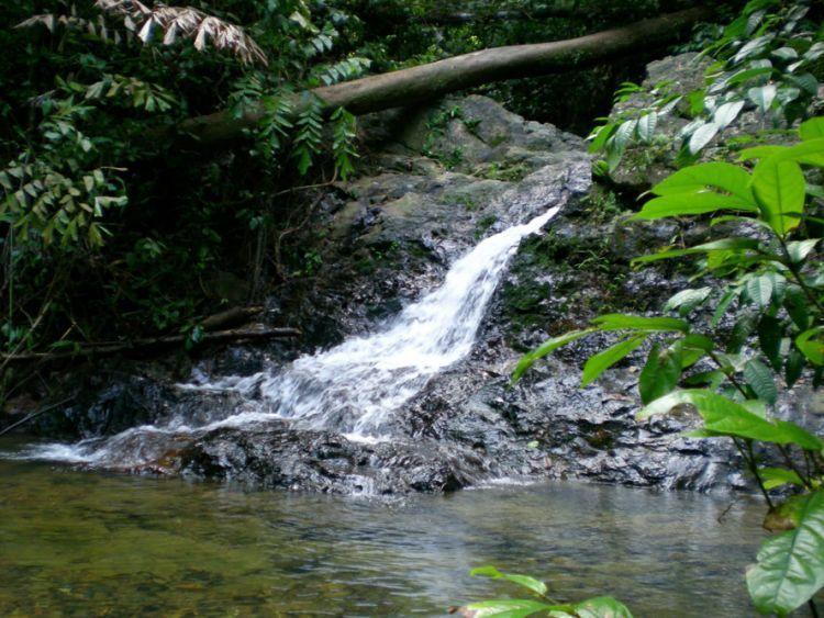 Sumber air di gunung.