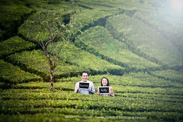 Foto prewedding di kebun teh lembang