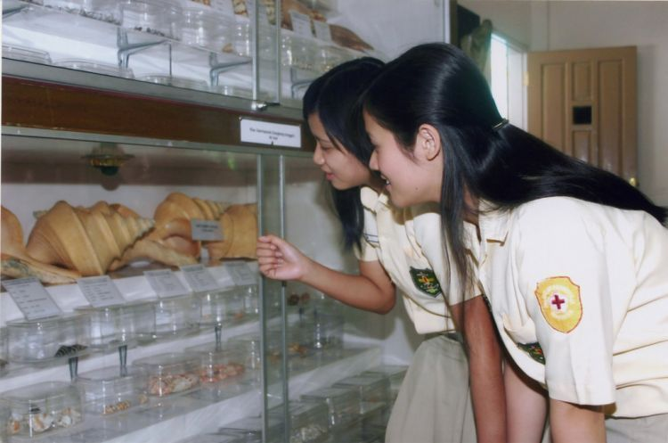 Museum zoologi Frater Vianney, Malang