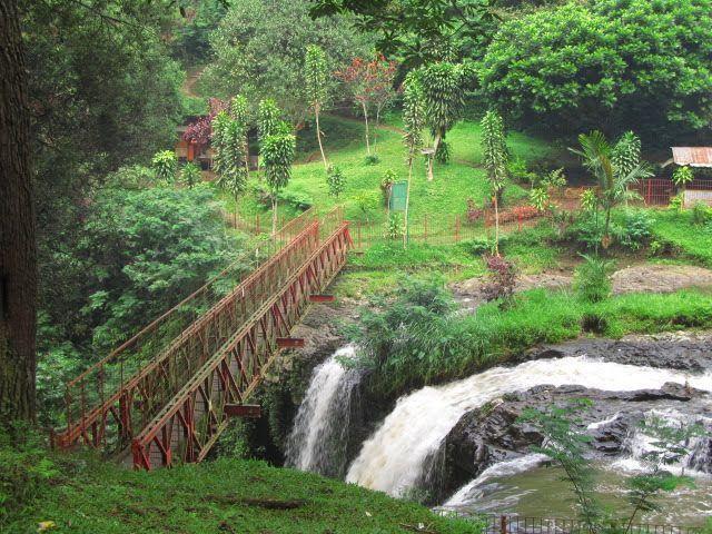 Jembatan merah Hutan Djuanda