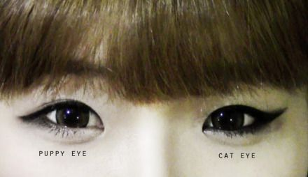 puppy eye vs cat eye
