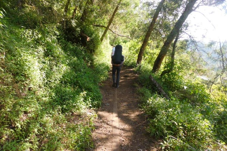 Menapaki jalan setapak menuju Ranu Kumbolo