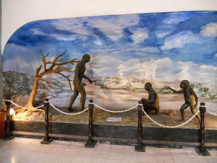 Salah satu sudut Museum Trinil