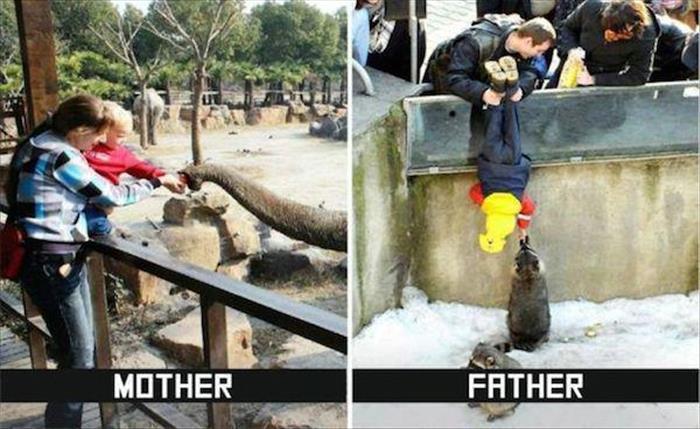 Ayah juga mengajari sayang sama binatang