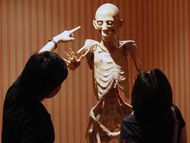 Eit cadaver ini sahabat kita loh