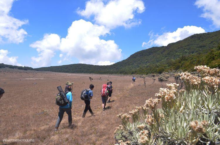Alun-alun Suryakencana Gunung Gede
