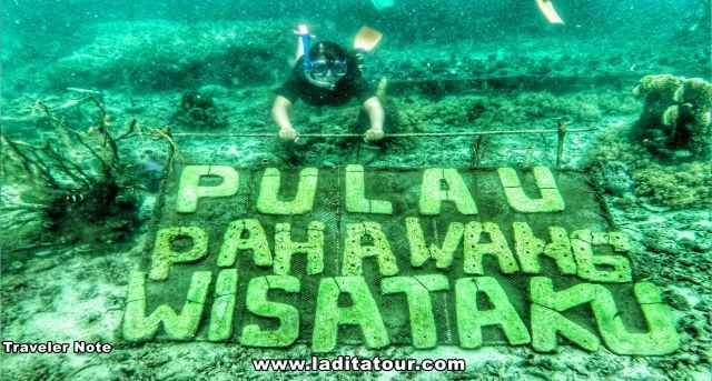 Keindahan Dunia Bawah Laut di Pulau Pahawang
