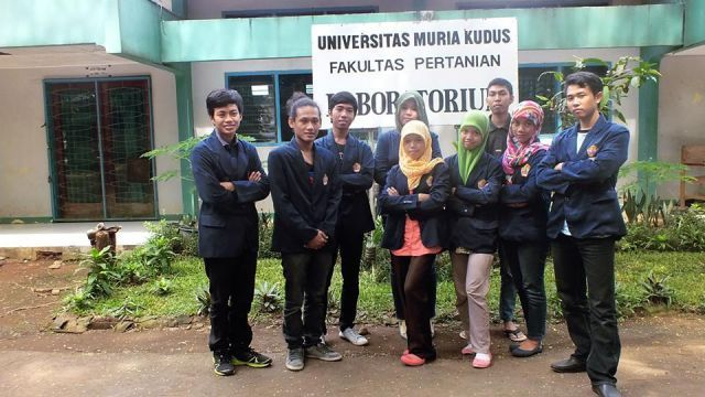 Mahasiswa Faperta UMK