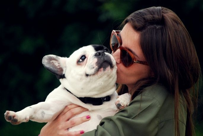 anjing pantas diberi kasih sayang