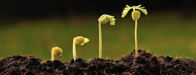 Terus tumbuh, terus menginspirasi, jangan lupa bahagia selalu.