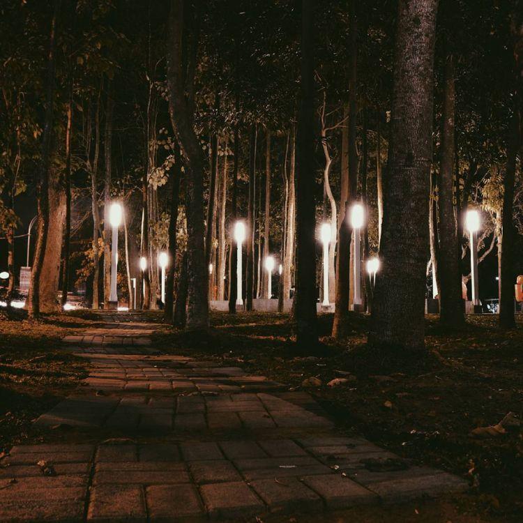 Indahnya lampu malam di Taman Kunang-kunang. Credit to @abdurrahmansq