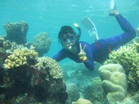 bawah laut pramuka