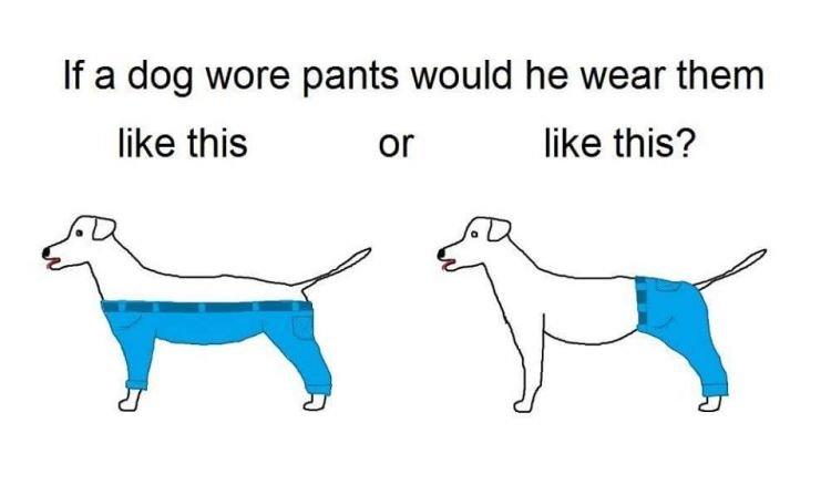Yang kiri atau yang kanan? Yang kiri dong! (credits: @jaredbkeller)