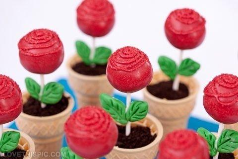 Pop cake buatmu yang hobbi berkebun.