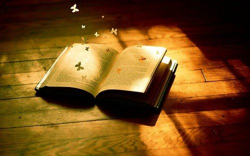 Kapan terakhir kali kamu membaca kitab suci?