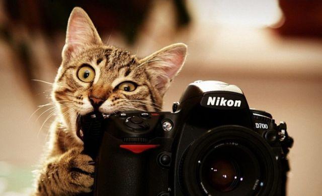 """""""Kalau aku makan kamera ini, kamu masih sayang aku nggak?"""""""