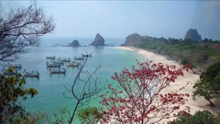Image Result For Travel Surabaya Jember