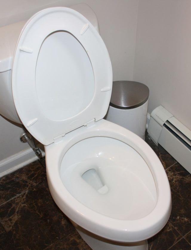 Toiletnya udah bersih belum?