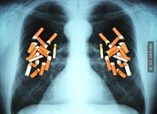 Merokok Merusak kesehatan