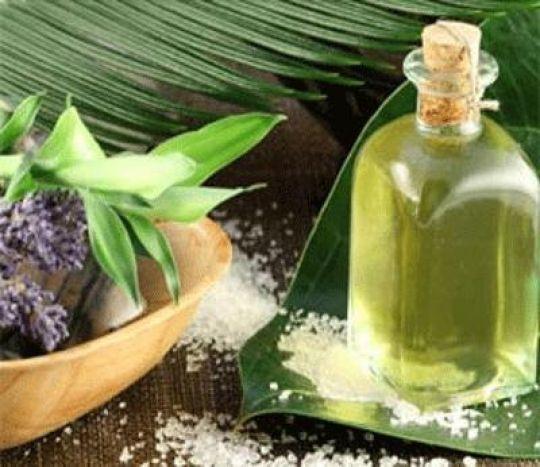 Minyak kayu putih sebagai zat anti-ketombe