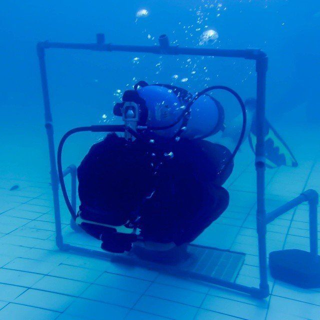 Latihan di kolam renang.