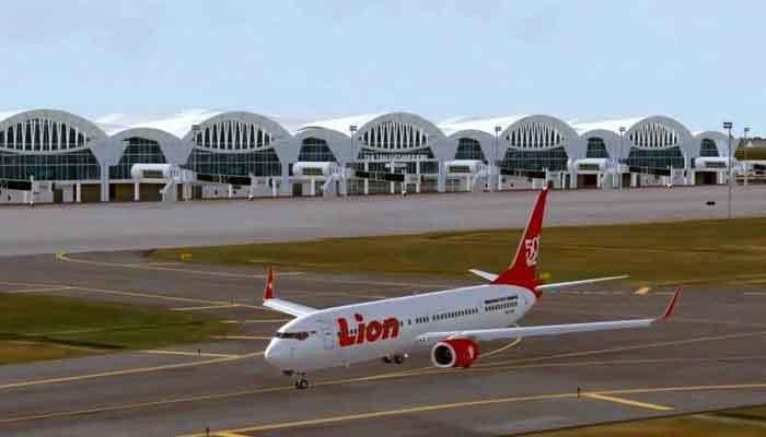 Lion Air~