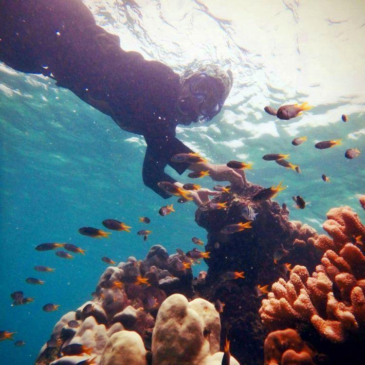 Snorkeling juga bisa!