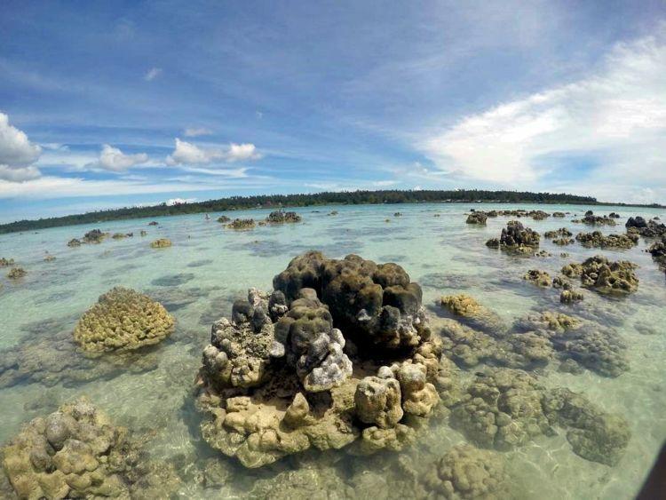 Hamparan gugusan karang di pantai Tureloto