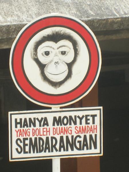 kalau kamu ngerasa sebangsa sama monyet, ya silahkan aja