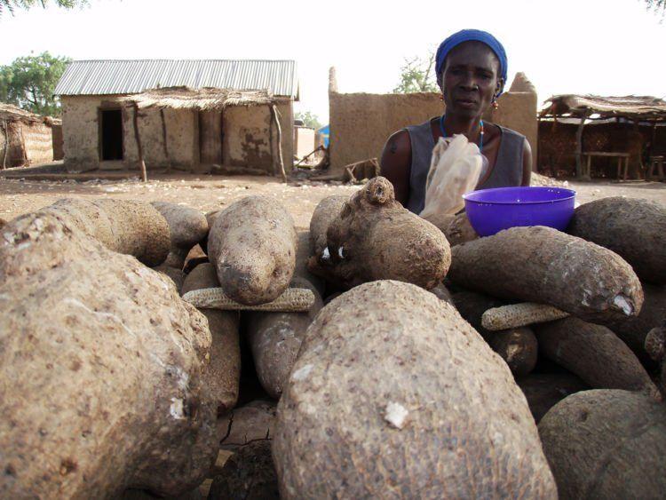 Pantesan orang Afrika banyak yang kembar