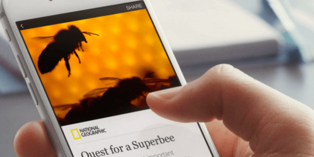 Hati-hati sharing artikel