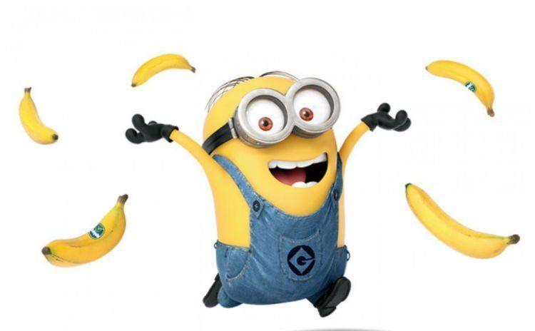 pisang gila!