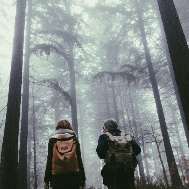 Mendaki bersama~