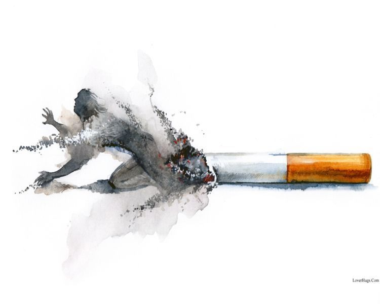241131xcitefun-dn-t-smoke-plz