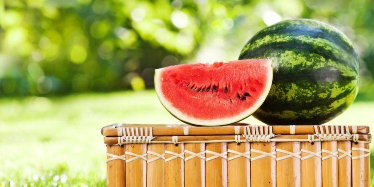 semangka kaya akan kandungan air