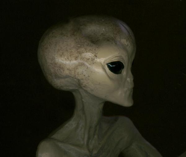 ini model aliennya~