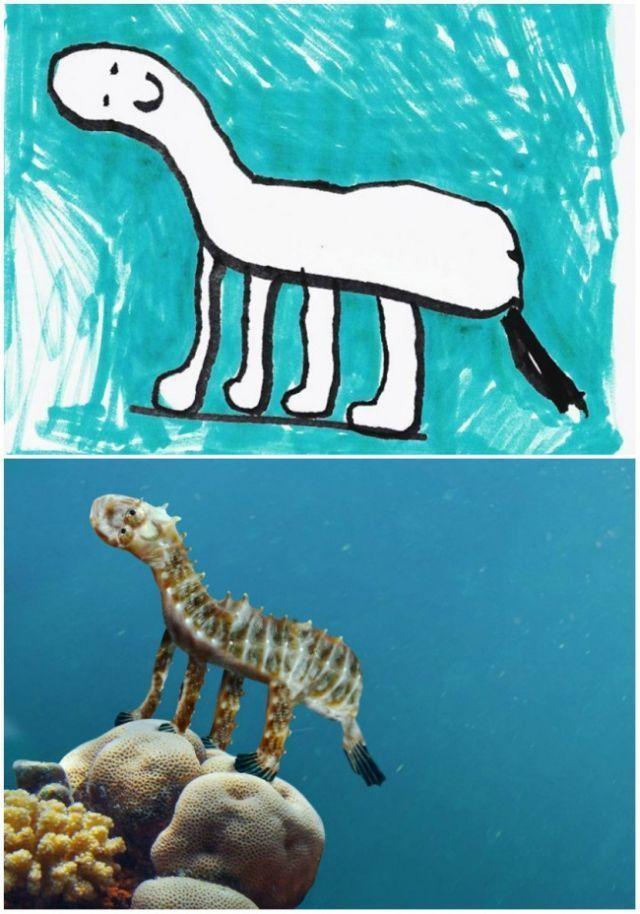 ini hewan apa?