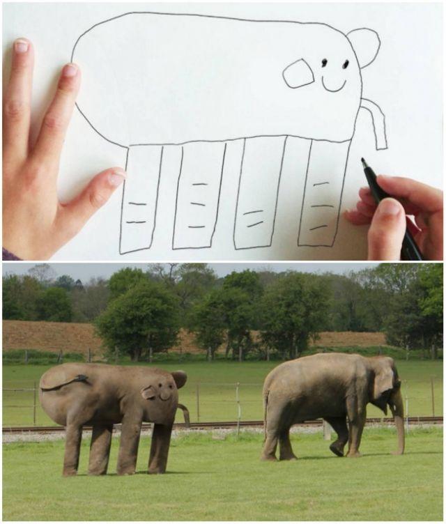 ini gajah apa?