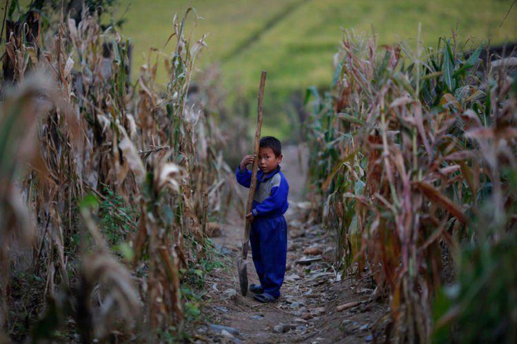 Kelaparan di Korea Utara