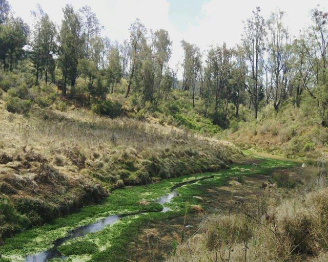 Sungai yang mengalir indah seolah menyambut kami yang kelelahan