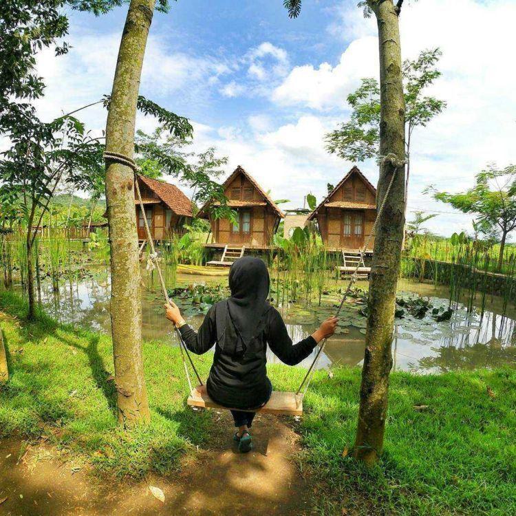 desa wisata boro
