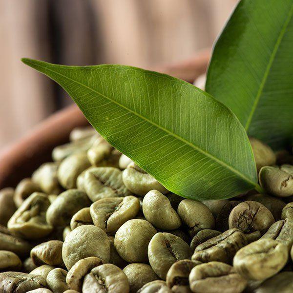 Konsentrasi bisa ditingkatkan dengan green coffee